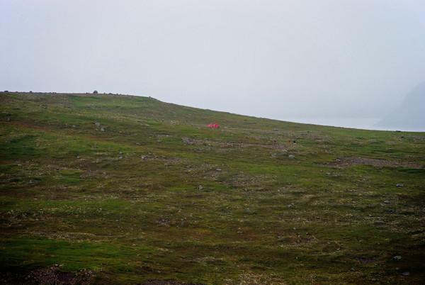 Hornstrandaferð 2010