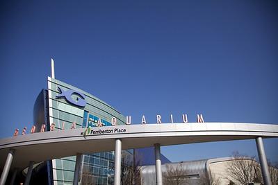 2010-04-05 Georgia Aquarium