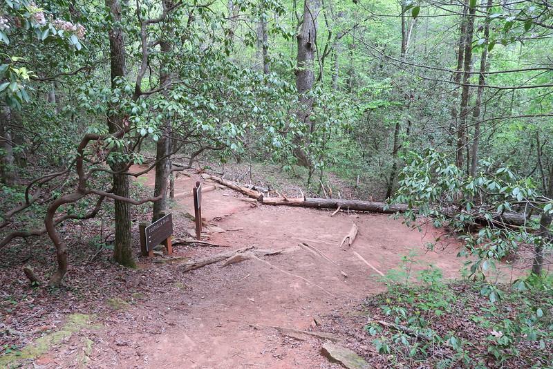 Carrick Creek-Table Rock Trail Junction - 1,200'