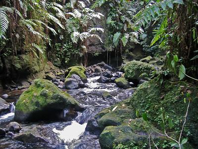 Dominica - March 22-23