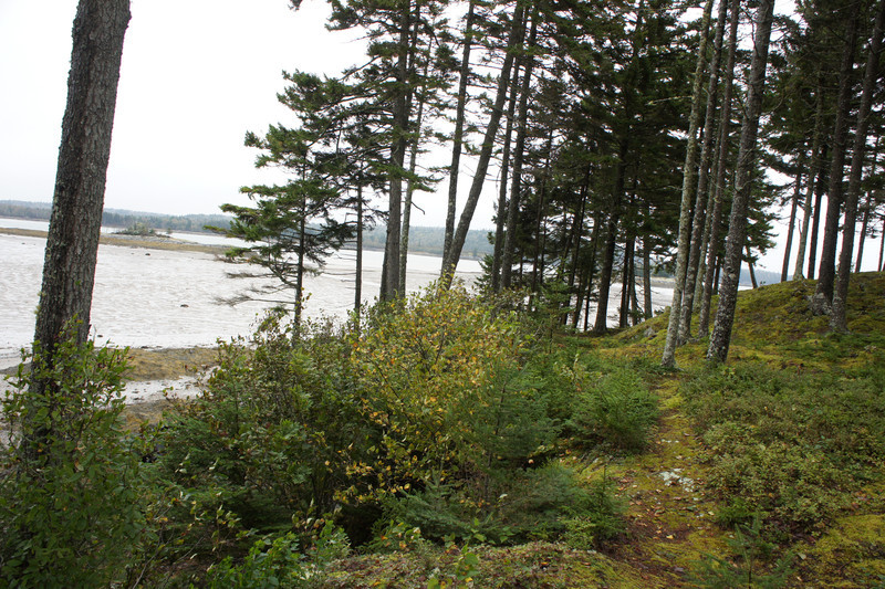 Maine Vacation-02503.jpg