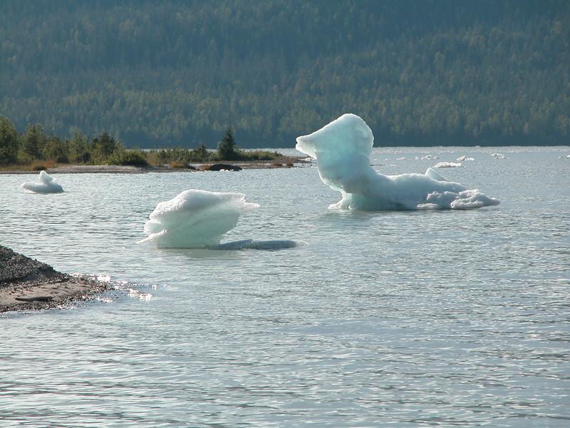 Alaska_20040049.jpg