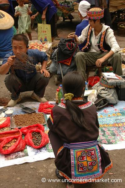 Traditional Medicine - Guizhou Province, China