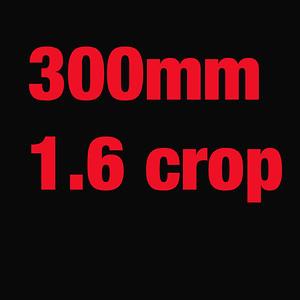 CANON 7D 1.6 CROP 300MM