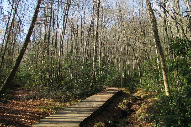 Little Green Trail - 3,680'