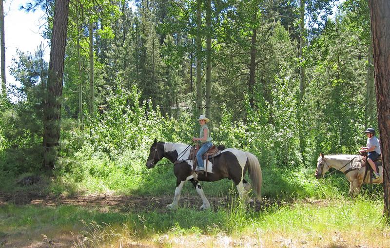 trail-ride-kate-thomas-keownIMG_5899.jpg