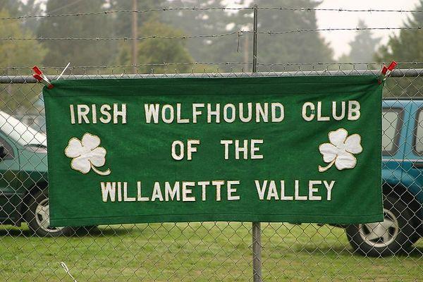 Irish Wolfhound Show