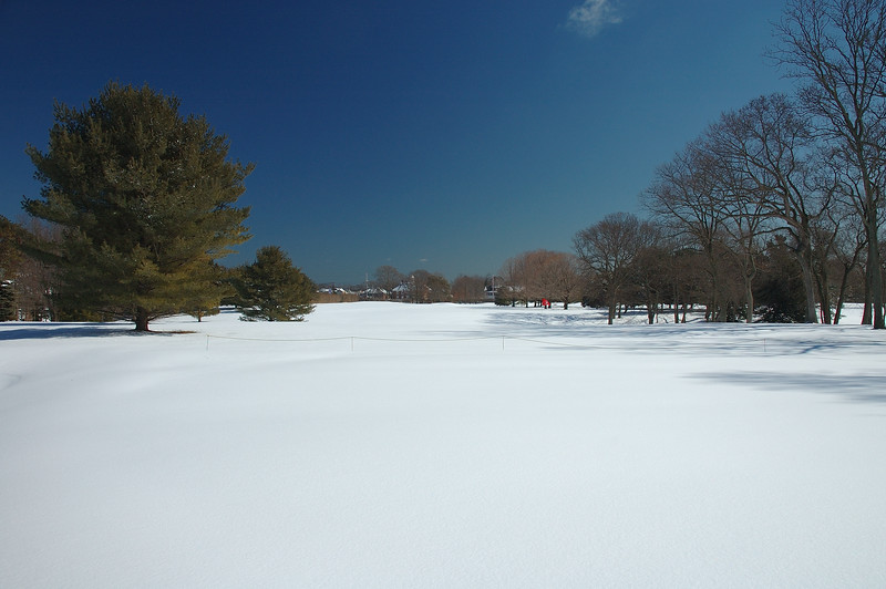 Second Hole from behind green