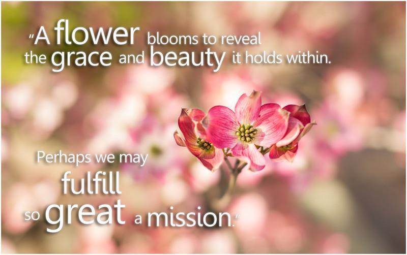 ME- FlowerGreatMission.jpg