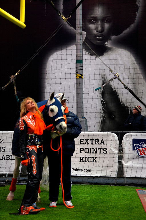 . Rider Annie Wegener  (left) and Sharon Magness Blake with her horse, Broncos mascot Thunder, an Arabian gelding mascot waiting on an interview in Times Square on January 31, 2014, New York, NY. (Photo By Joe Amon/The Denver Post)