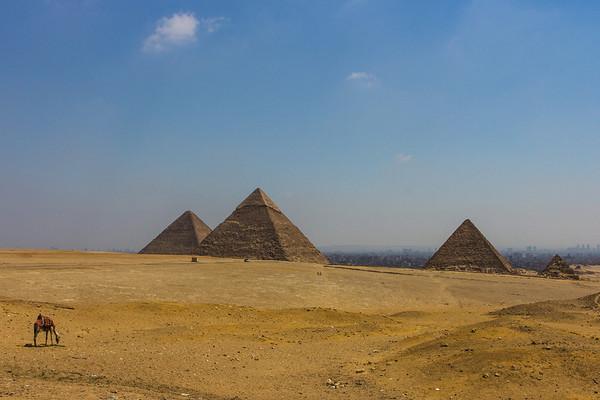 Egypt, Jordan  & Israel