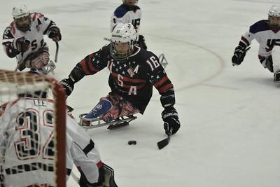 Olympic Sled Hockey