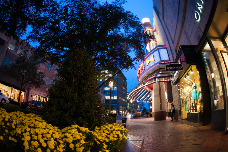 Reston Town Center evening