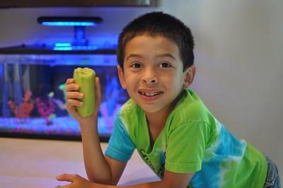 2013-08-23 Dylan loves Cucumber
