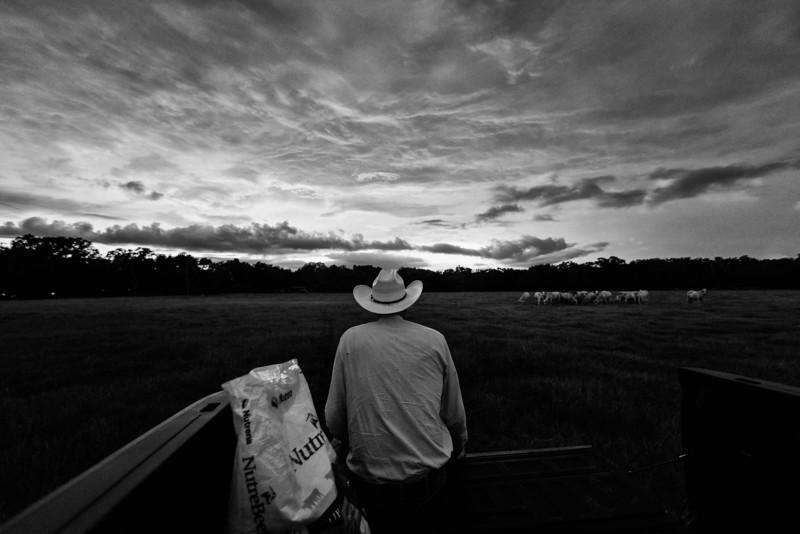 Bill Bathle Sunset (3 of 8).jpg
