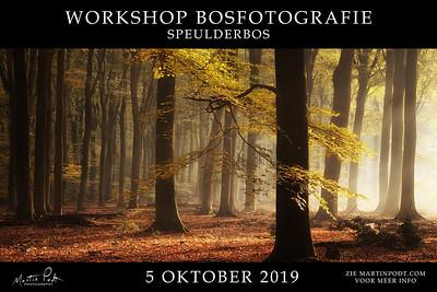 2019-10-05 Workshop Speulderbos