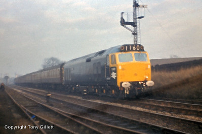 Type 4 English Electric Type 4 D400-D449 (Class 50)