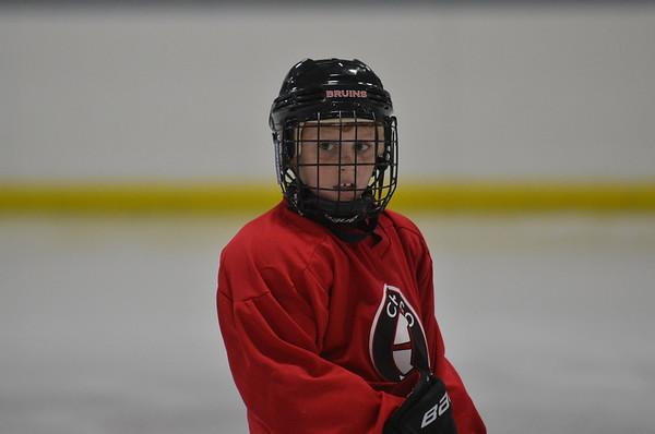 2006 - Chicago Bruins