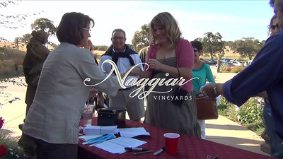 2011 Naggiar Summerfest Video
