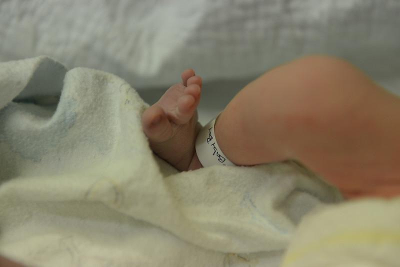 Ben Vallaeys Is Born Nov 17 2013 - 9.jpg