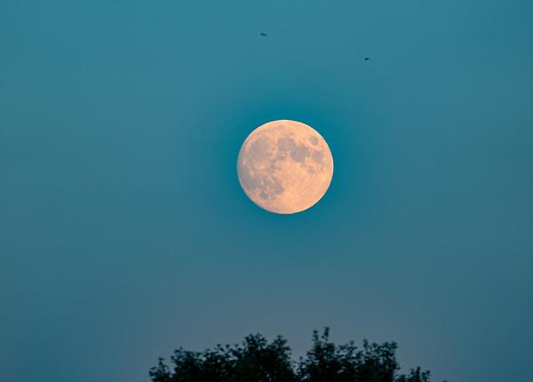 15072019-Moon