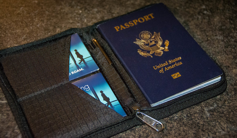zero grid passport holder