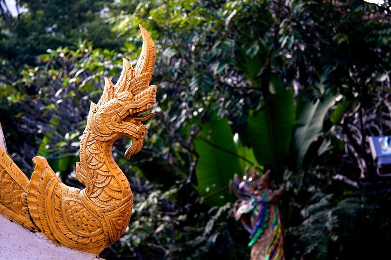 golden-dragon_3041814149_o.jpg