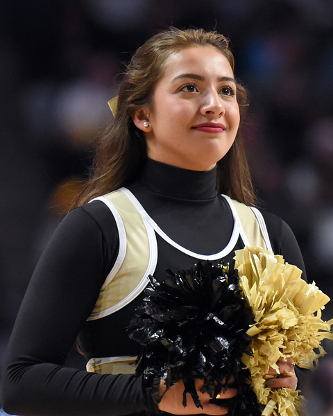 Deacon cheerleader 02.jpg