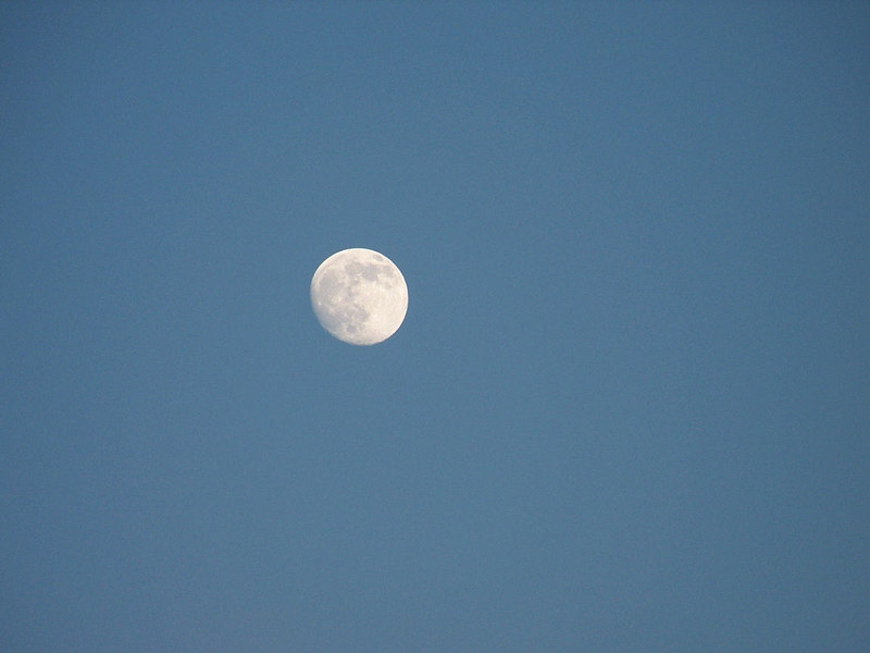 See the magficent moon?