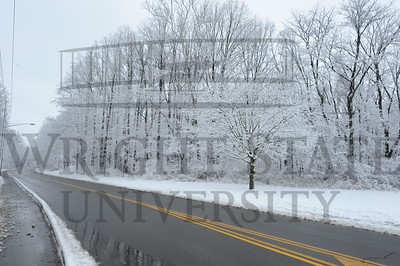 10915 Snow Photos in the woods near Rockafield 3-6-13