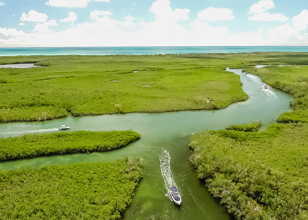Things to Do in Key Largo - Lina Stock