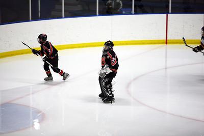 WBL Pee Wee Hockey