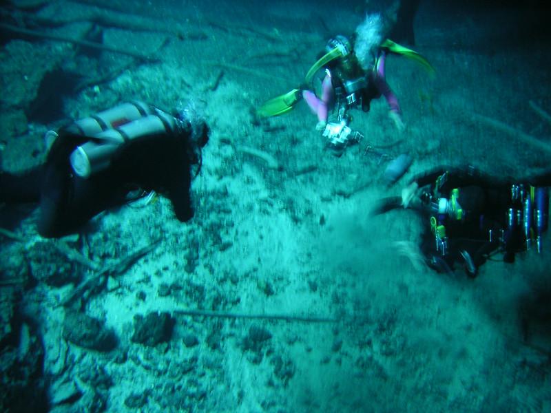 48 Divers.jpg