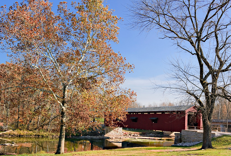 trees and bridge pano handheld 40D   -8960.jpg