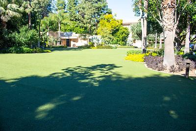 Magic Kingdom Lawn