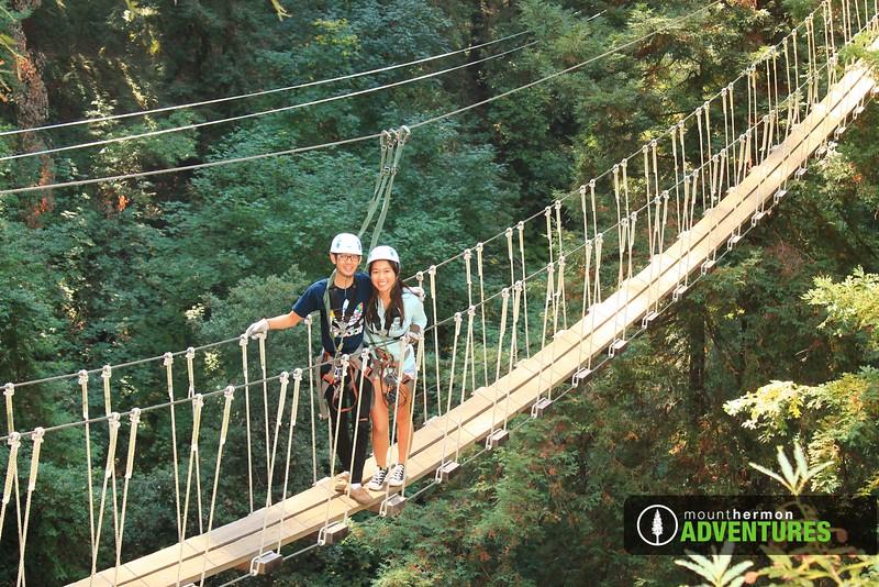 redwood_bridge_1473461461279.jpg