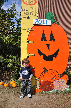 The Great Pumpkin Patch 2011
