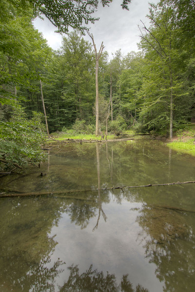 A large creek at the High Knob Recreation Area in Norton, VA on Tuesday, July 30, 2013. Copyright 2013 Jason Barnette
