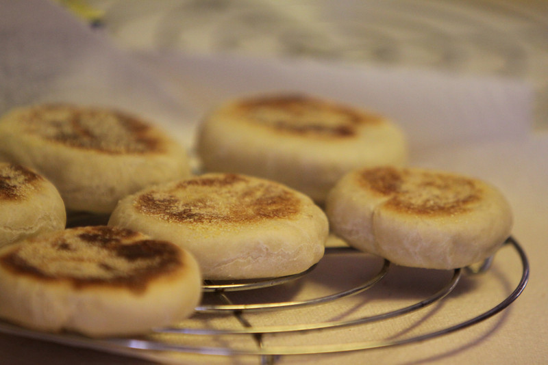 March 15th  Home made Sourdough English Muffins. It was a fun project and a yummy one too.