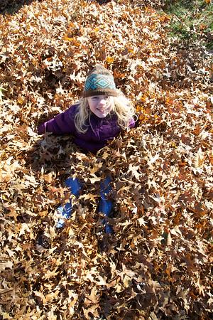 Fall 2010 EM