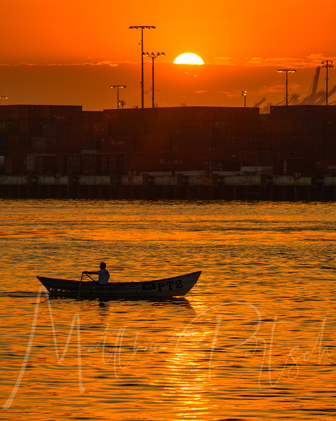 Early morning exercise   #water_captures #losangelesgrammers #southbayphotos #southbaysailing #visitcalifornia #discoverla #ig_today #ig_brilliant #nikond500 #tv_aqua #rowing #abc7eyewitness