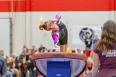 HS Sports - Gymnastics State Individual - March 02, 2019