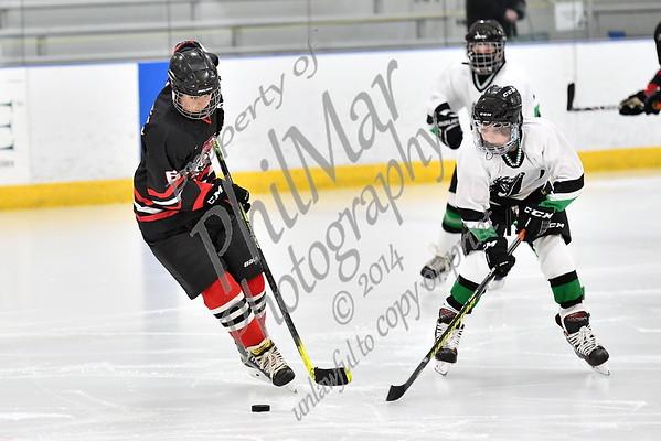 SV/FW vs Twin Valley Middle School Ice Hockey 20 - 21