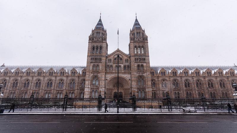 Snow in South Kensington