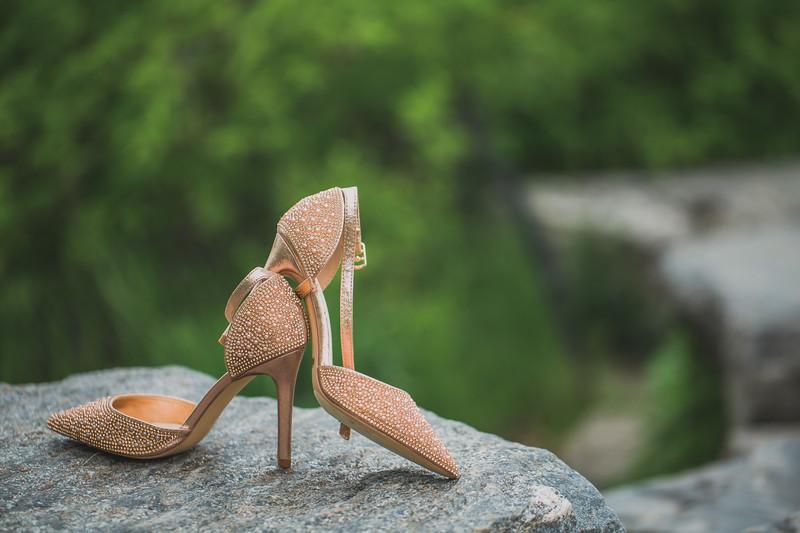 Central Park Wedding - Maria & Denisse-1.jpg