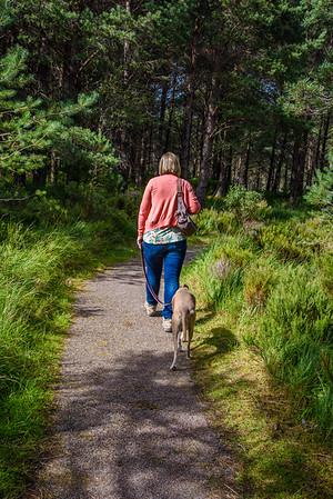 Beinn Eighe Trail