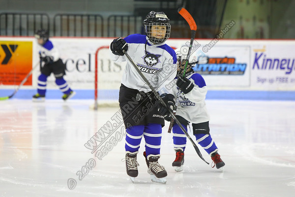 2020 Mite March Madness Tournament | Watertown Arena