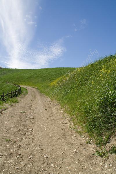 trail and sky.jpg
