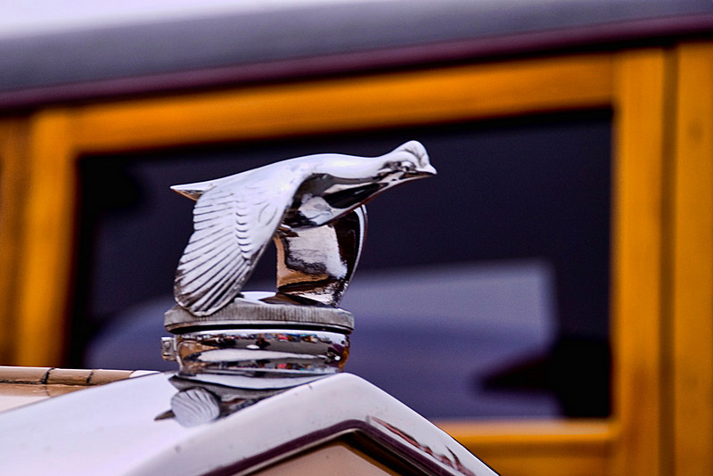 SM WOW SC Hood ornament _2678.jpg