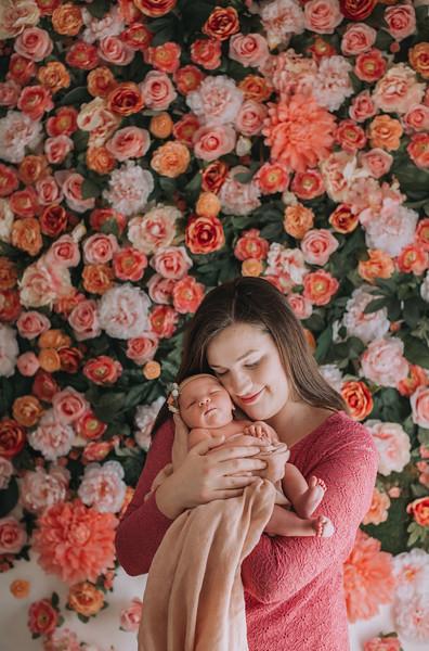 East-Bay-Family-Photographers_newborns-Katie (51).jpg